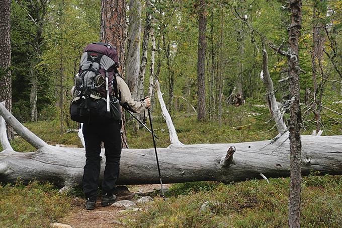 Vaellusta Suomen Lapissa