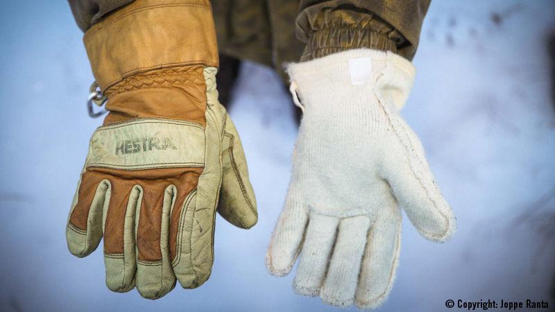 Hestra Fält Glove