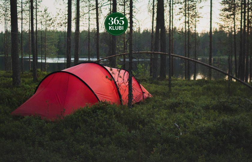 Metsään menemistä ei tarvitse pelätä