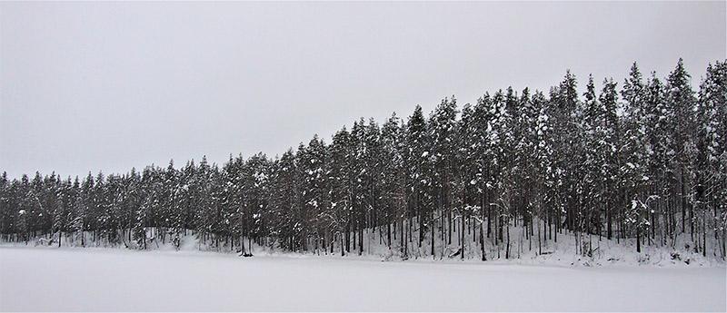 Korkeasärkkä, Petkeljärvi