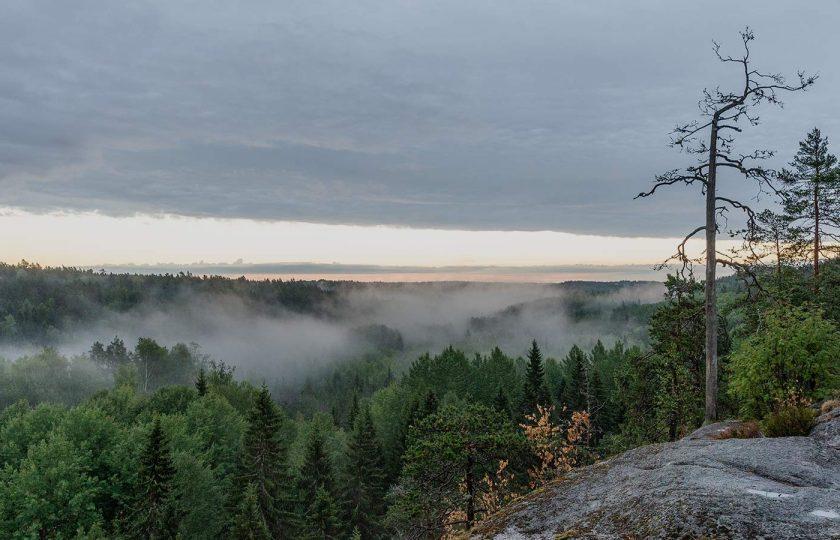 Nuuksion kansallispuisto – Haukkalammen, Haltian ja Kattilan alueet